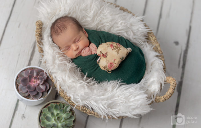 Nounat bebe